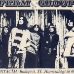 Ferm együttes plakát 1970.